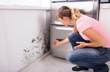 Jak szybko zblokować wilgoć i zlikwidować wykwity na ścianach i suficie?