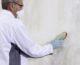 Jak zlikwidować grzyb i pleśń na ścianach?