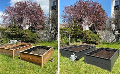 Budujemy ogródek warzywny… w skrzyni inspektowej